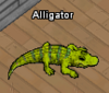 Tiere-Alligator.png