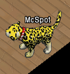 Tiere-Leopard.png