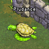 Pets-Sea turtle.png