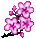 Trinket-Cherry blossom.png