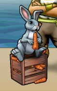 Portrait-item-Rabbit.png