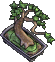 Furniture-Bonsai-4.png