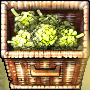 Forage largecrate.png