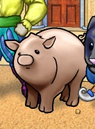 Portrait-item-Pig.png