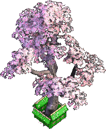 Furniture-Cherry tree.png