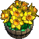 Furniture-Daffodil planter-3.png
