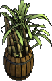 Furniture-Barrel o'sugarcane.png