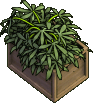 Furniture-Crate o'hemp-2.png
