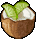Trinket-Lime in the coconut.png