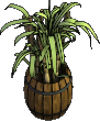 Furniture-Barrel o'sugarcane-2.png