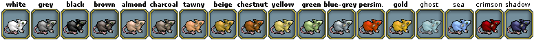 Pets-Rat colors.png
