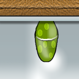 Egg-flat-2011-Phillite-2.png