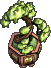 Furniture-Bonsai-5.png