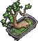 Furniture-Bonsai-3.png
