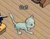 Pets-Ghost cat.png